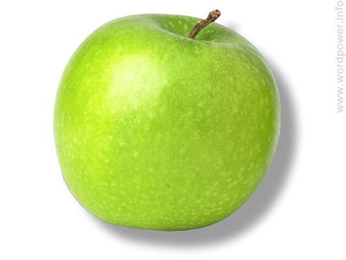 A photo quality image of an apple