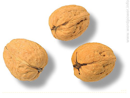 A photo quality image of walnuts